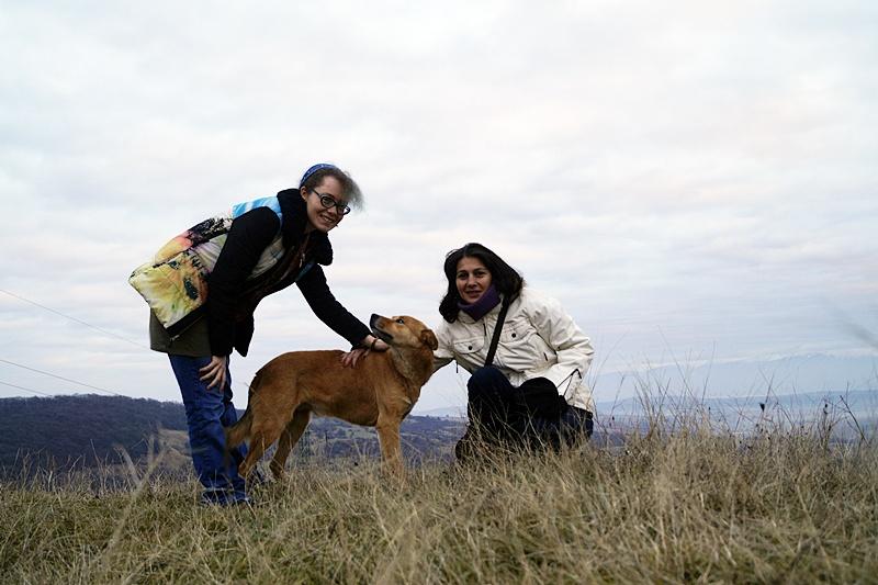 Drumeţie cu Anna (Rusia) pe Dealul Guşteriţei din Sibiu