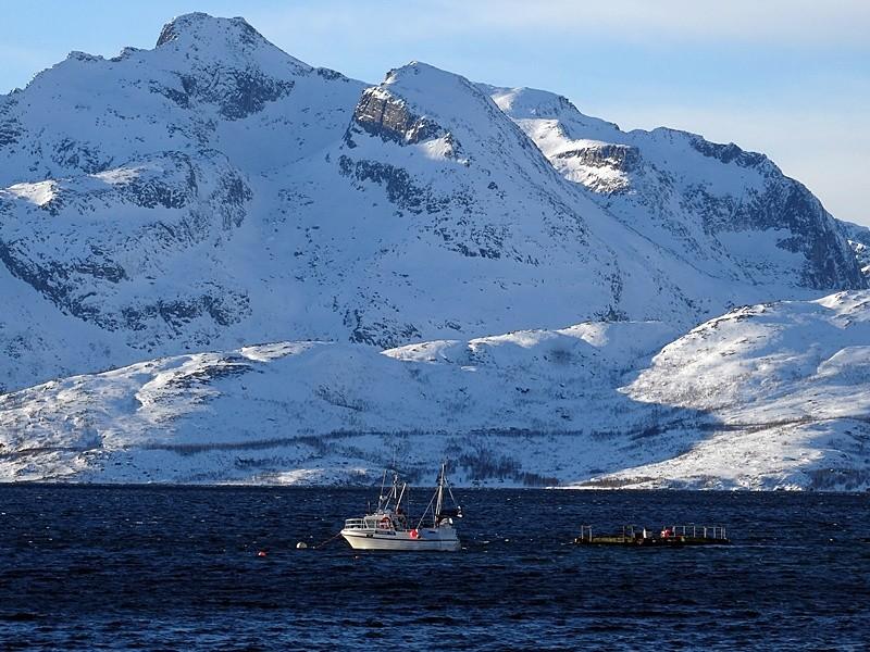 Fiorduri Norvegiene013