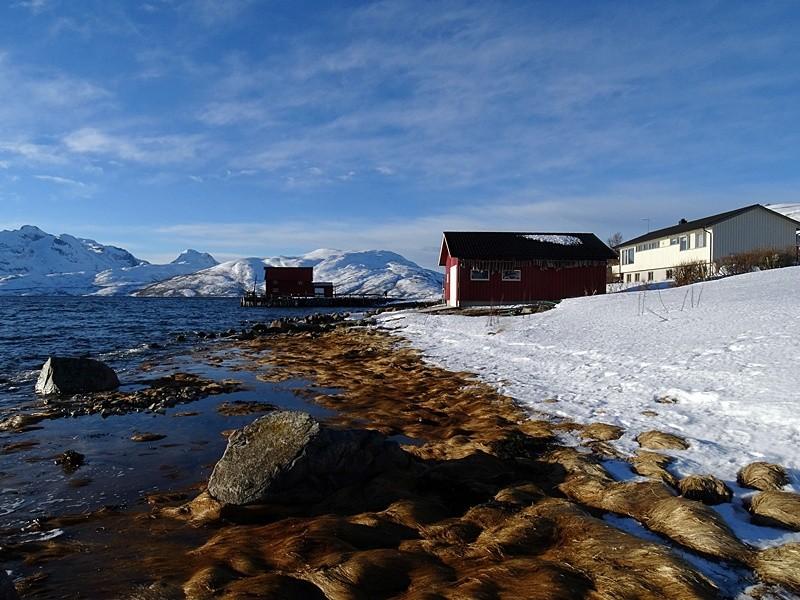 Fiorduri Norvegiene017