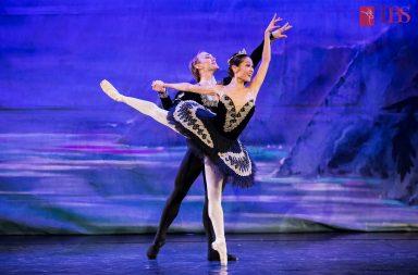 lacul-lebedelor-teatrul-de-balet-sibiu