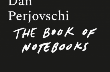 perjovschi - carnete
