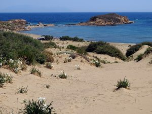 Limnos - Plaja din Gomati