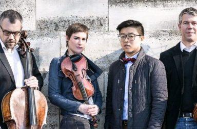 quatuor-diotima
